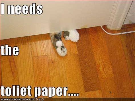 toilet paper funny understanding needs killer j