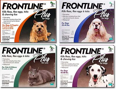 best the counter flea medicine for dogs frontline plus for dogs cats advantages and disadvantages and lowest prices