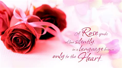 beautiful images of love red roses and beautiful words about love wallpapers and