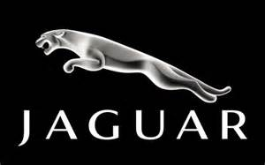Jaguar Logo Design Top 10 Animal Logos Of All Time Pixellogo