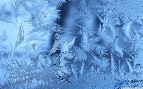frozen glass wallpaper frost on glass wallpapers and images wallpapers