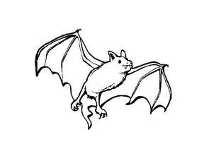 bat coloring pages bats coloring