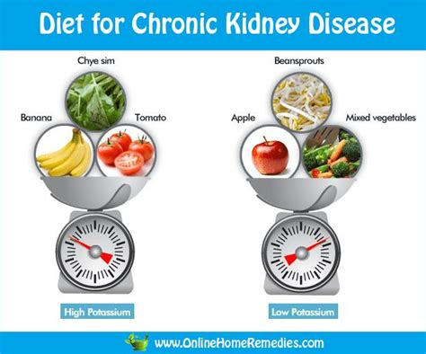 kidney food low protein recipes kidney failure all about ketogenic diet