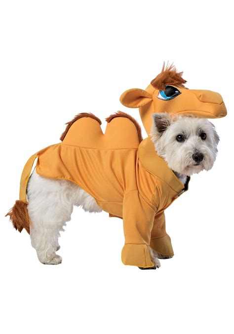 Best Halloween Home Decorations by Camel Dog Costume