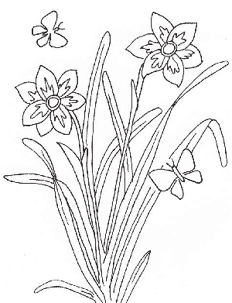 desenho de plantas dibujos de plantas para colorear dibujos de plantas