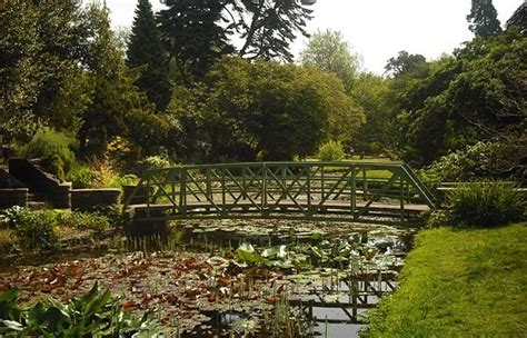 Botanic Gardens Dublin Explore Dublin S Beautiful Botanic Gardens With Your School