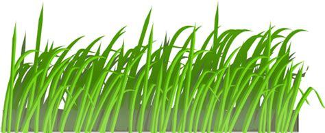 gambar rumput format png rumput png cliparts co