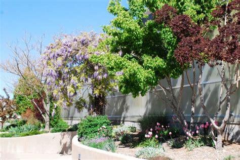 Botanical Gardens Colorado Springs 12 Amazing Gardens To Visit In Colorado This