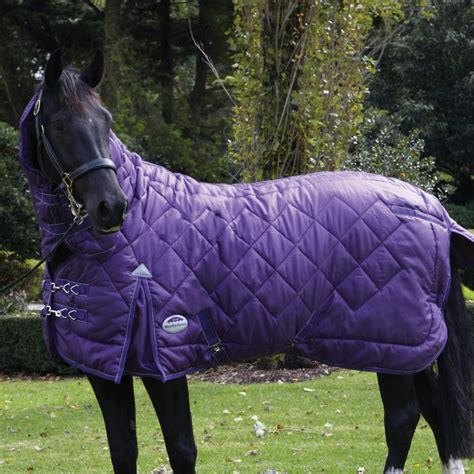 Heavy Weight Turnout Rug by Weatherbeeta Windsor Heavy Fixed Neck Combo Stable Rug