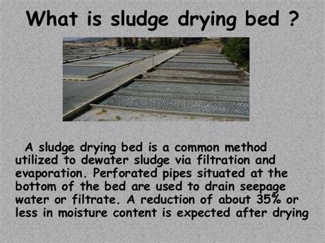 design criteria for sludge drying beds sludge drying beds