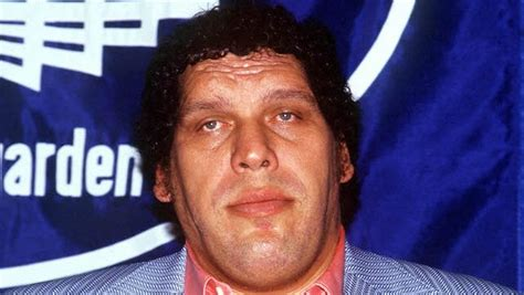 undertaker biography documentary documentary film quot andre the giant quot to debut on hbo vince