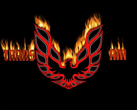 trans am logo tattoo image 222