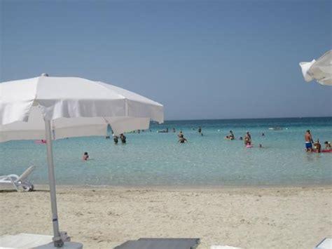 hotel vespucci porto cesareo recensioni getlstd property photo foto di vespucci hotel porto