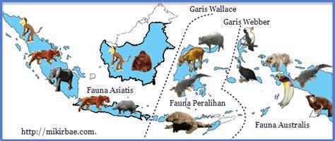 flora dan fauna indonesia persebaran flora dan fauna di indonesia