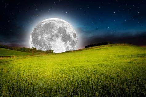 Garten Pflanzen Mondkalender by Pflanzen S 228 En Ernten H 246 Herer Ertrag Dank Mondkalender