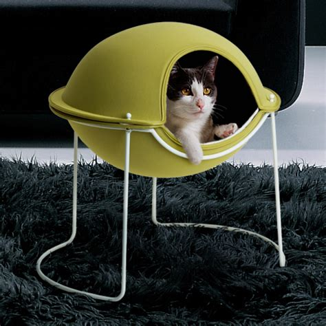 cat and dog house awesome cats and dogs houses top design magazine web design and digital content