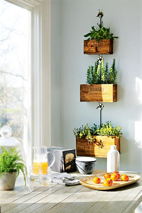 erbe aromatiche in casa organizzare le erbe aromatiche in casa 20 idee cui