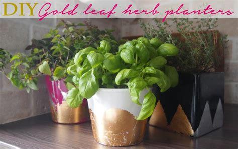 diy herb planter diy gold silver foil herb planters