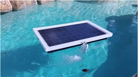 swimming pool water heater gas how warm can solar pool heaters make water