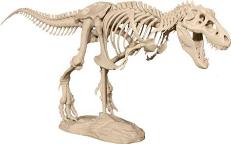L A Rex makerbot livre des mod 232 les pour imprimer les ossements d