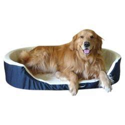 ll bean golden retrievers 17 best images about dogs big and on blanket pet beds