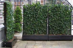 Balcony Screening Plants by Roof Gardens Roof Terraces And Balcony Gardens In London