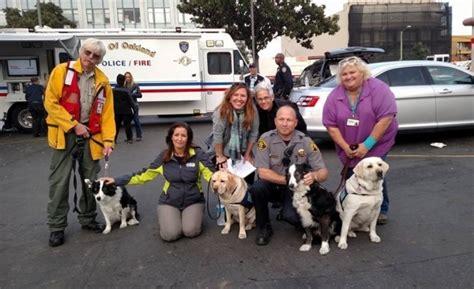 creature comfort oakland creatures of comfort program provides pet therapy