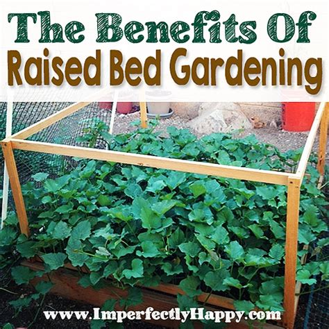 benefits of raised bed gardening raised garden bed benefits imperfectly happy homesteading