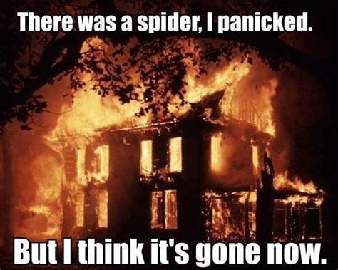 I Saw A Spider Meme - spider burn the house down so easily entertained pinterest