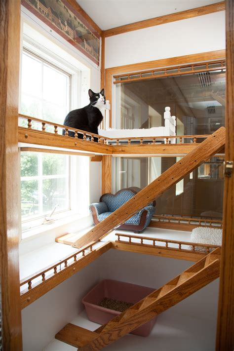 east lincoln animal hospital denver nc cat cages for boarding facilities luxury cat boarding