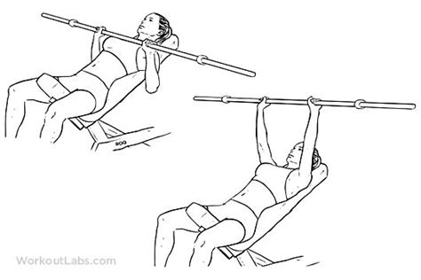 chest incline bench press 25 best ideas about bench press workout on pinterest bench press weights weight