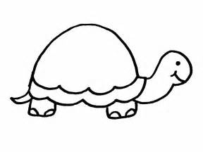 turtles outline turtle outline template clipart best