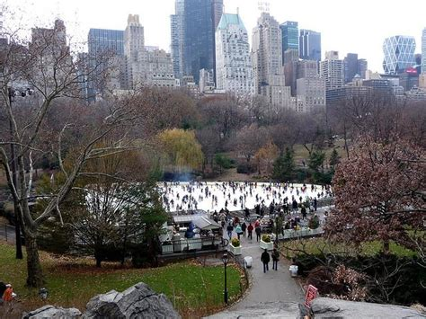 top 28 central reviews wollman rink in