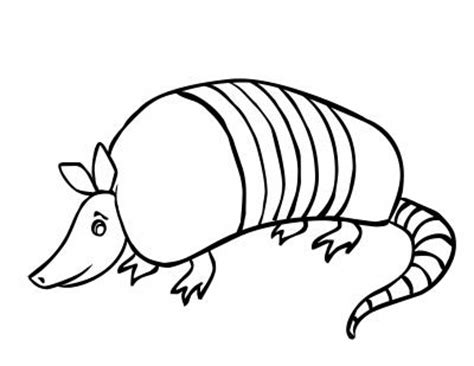 armadillo cartoon pictures clipart best