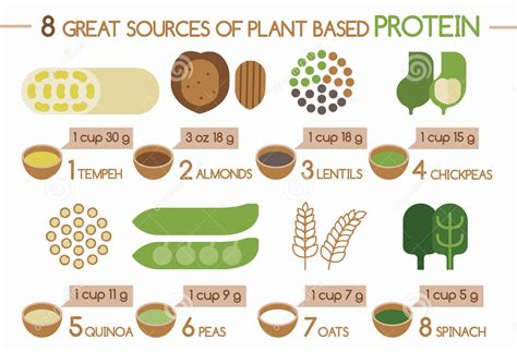 vegetables protein amount plant based protein has mainstream