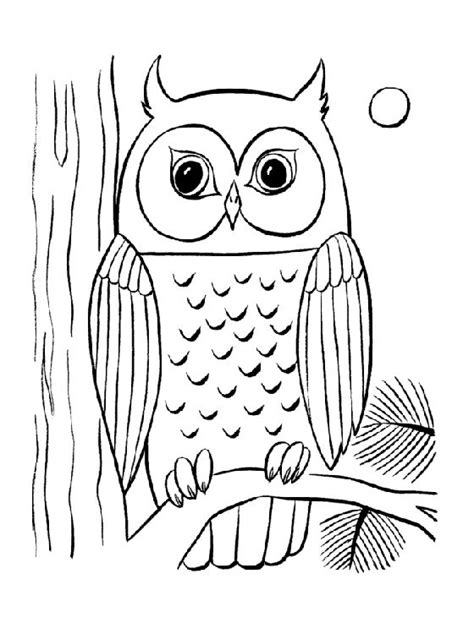 owl reading coloring page 16 best images about owl coloring sheets on pinterest
