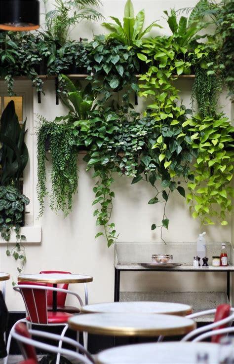 pin  gardening indoor