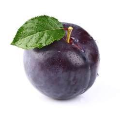 image gallery purple plum