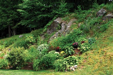 rock gardens on slopes lessons from the gardening on rocky and steep
