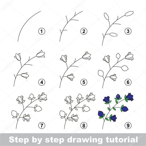 doodle draw tutorial drawing tutorial how to draw a bluebell stock vector