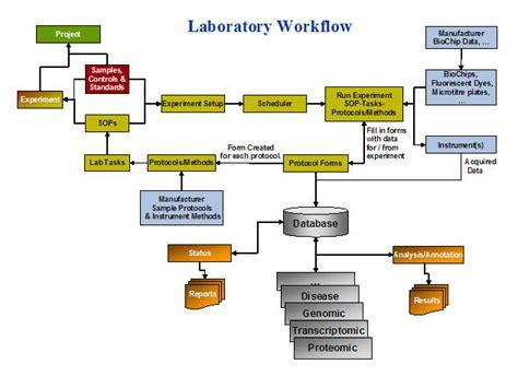 laboratory workflow lab workflow