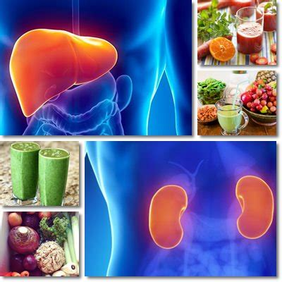 alimenti disintossicanti fegato dieta disintossicante vitamine proteine