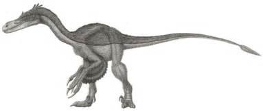 File:Velociraptor mongoliensis jmallon Wikimedia Commons