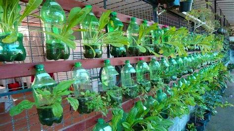 unique plastic bottle vertical garden design ideas reuse