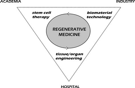 the miracle of regenerative medicine how to naturally the aging process books skeletal regeneration by mesenchymal stem cells what else