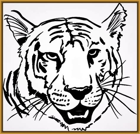 imagenes para pintar tigre buscar dibujos de tigres para pintar e imprimir archivos