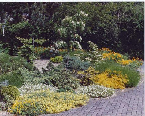 Bog Garden by Partial To Shade Bog Garden Plants How To Build A House