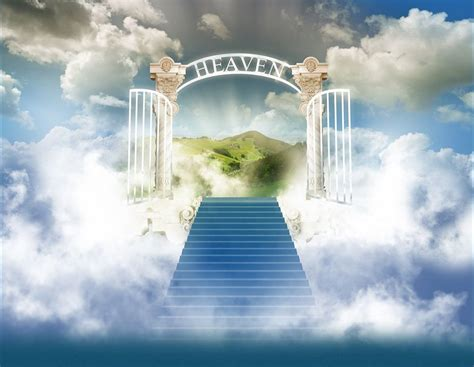 To Heaven S Economy heaven s grocery store