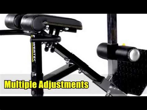 powertec ab bench powertec back extension and ab crunch bench youtube