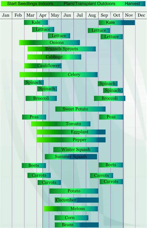 Seed Starting And Planting Timeline For Your Outdoor Vegetable Garden Timeline